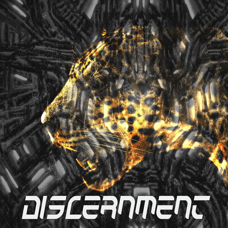 Discernment Store