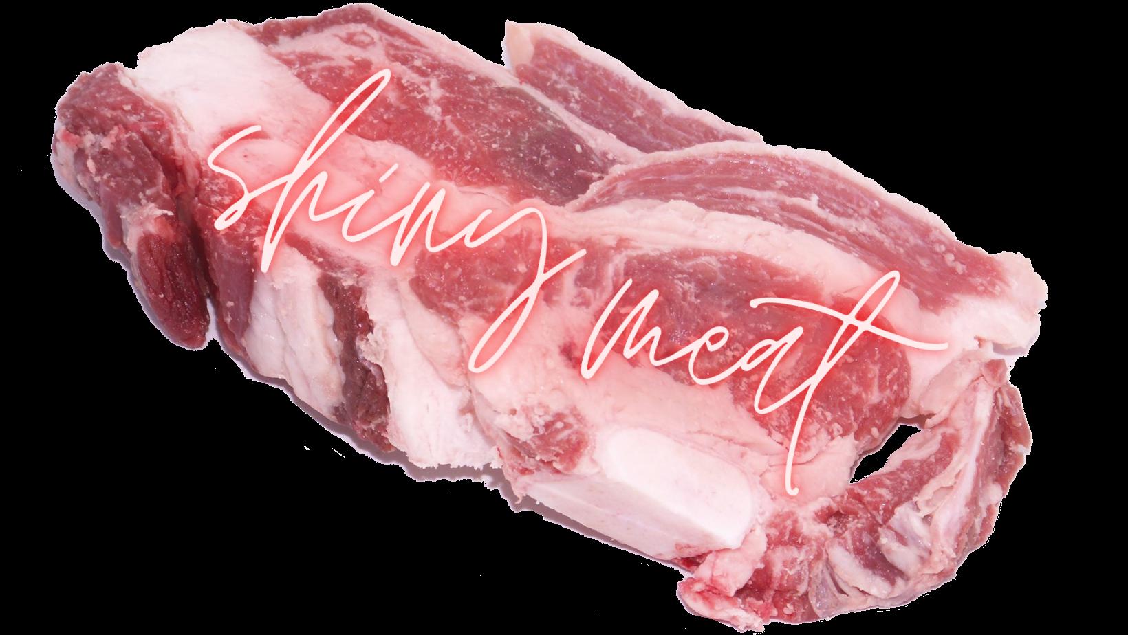 Shiny Meat